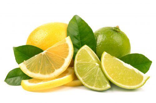 citricos-madison